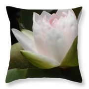 Lily On Her Wedding Day Throw Pillow