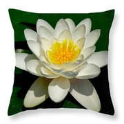 Lily Pad Blossom Throw Pillow