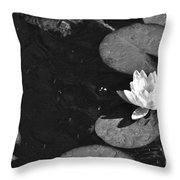 Lily Pad In Bloom Throw Pillow
