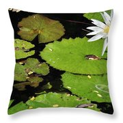 Lily Pads And Lotus Flower Throw Pillow