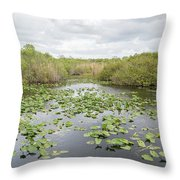 Lily Pads Floating On Water, Anhinga Throw Pillow