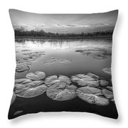 Lily Pads In The Glades Black And White Throw Pillow