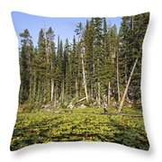 Lily Pads On Isa Lake Throw Pillow
