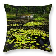 Lily Pads On Lake Throw Pillow