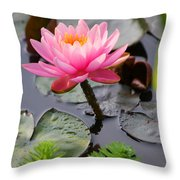 Lily Pink Throw Pillow