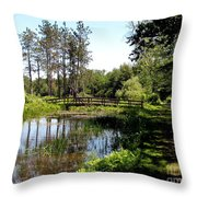 Lily Pond And Bridge Throw Pillow