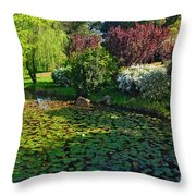 Lily Pond And Colorful Gardens Throw Pillow