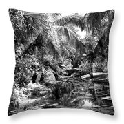 Lily Pond Bw Throw Pillow