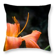 Lily Showing Pistil And Anthers Throw Pillow