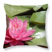 Lily Sleeps In Throw Pillow