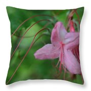 Lily Slide Throw Pillow