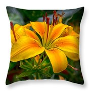Lily Sunshine Throw Pillow