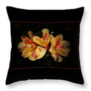 Lily Trio Throw Pillow