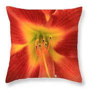 Daylily 5  Throw Pillow