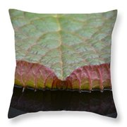 Lilypad Abstract Throw Pillow