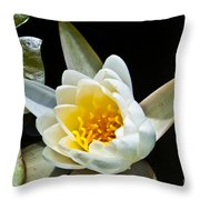 Lilypad Throw Pillow