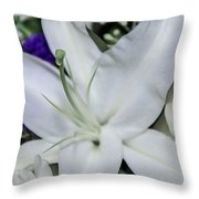 Lilyrose Throw Pillow