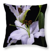 Lily's In Bloom Throw Pillow