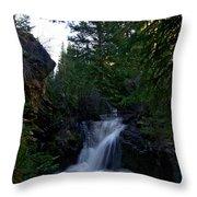 Lime Creek Throw Pillow