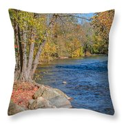 Lime Kiln Park   Throw Pillow