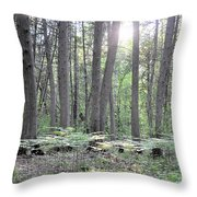 Limerick Fern Understory Throw Pillow