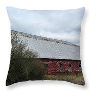 Limestone County Red Barn Throw Pillow