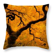 Limned In Light Throw Pillow