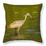 Limpkin With A Snack Throw Pillow