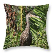 Limpkin With An Apple Snail Throw Pillow