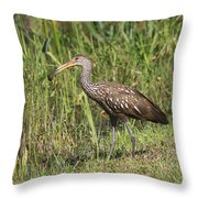 Limpkin With Apple Snail Throw Pillow