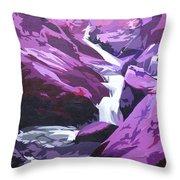 Limpy Creek Throw Pillow