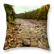 Lincoln Woods Sunstar Throw Pillow