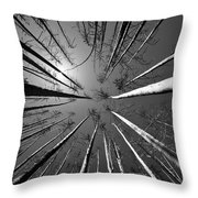 Line Creek Burn Area 8 Bw Throw Pillow by Roger Snyder