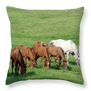 Line Feeding Throw Pillow