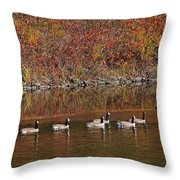 Line Of Geese On The Quinapoxet River Throw Pillow