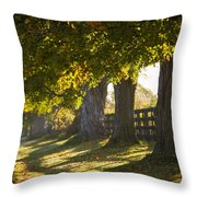 Line Of Maple Trees Along Rural Road In Throw Pillow