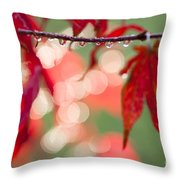 Line Of Reflections Throw Pillow by Anne Gilbert