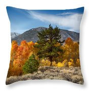 Line Of Trees At Lake Lundy Throw Pillow