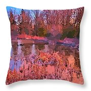 Linear Abstraction Of Pond Throw Pillow