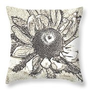Linear Coneflower Throw Pillow