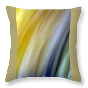 Lines And Colors - Amusement Throw Pillow