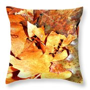 Lines Of Fall Throw Pillow