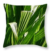 Lines Of Nature Throw Pillow