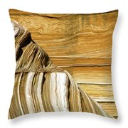 Lines-shapes-textures-colors Throw Pillow