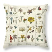 Linne's Plant System Throw Pillow
