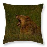 Lion   #1050 Throw Pillow