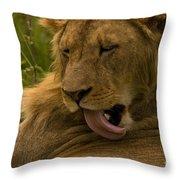 Lion   #9976 Throw Pillow