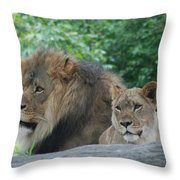 Lion Couple Throw Pillow
