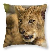 Lion Cub Close Up Throw Pillow
