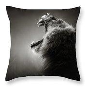 Lion Displaying Dangerous Teeth Throw Pillow by Johan Swanepoel